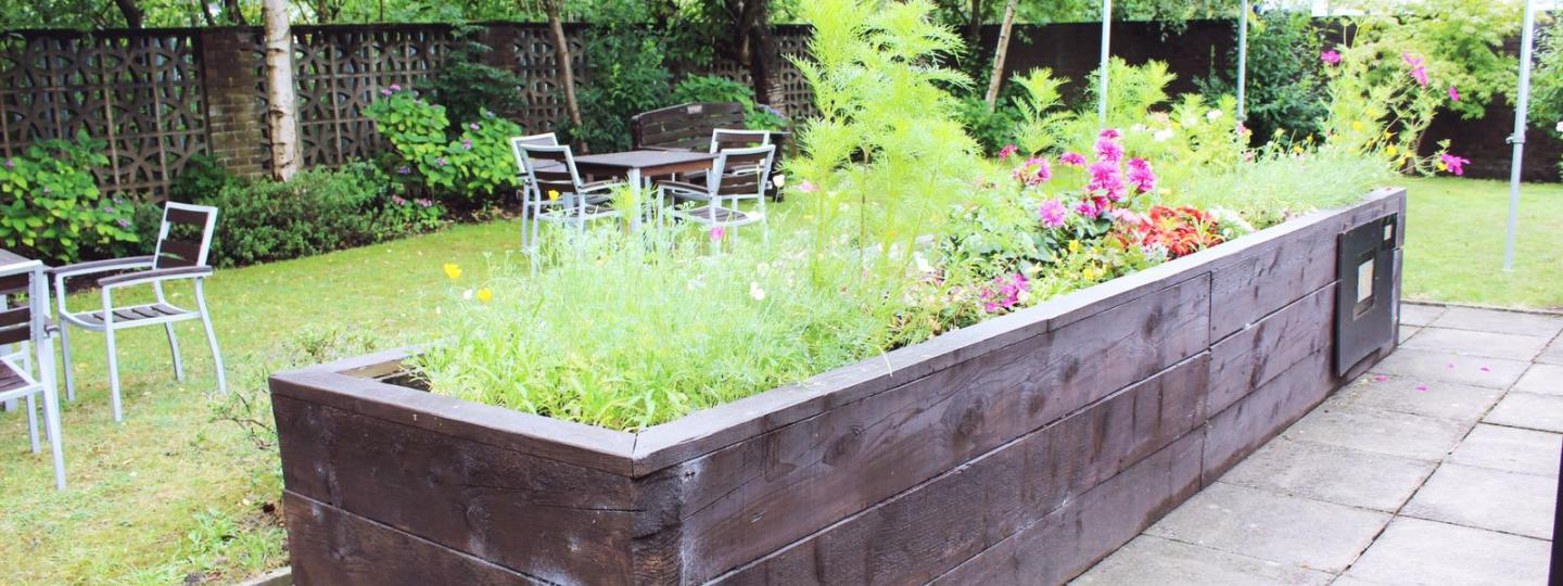 Photo of raised flower bed in a garden